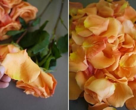 Cách làm nước hoa hồng nguyên chất cực nhanh