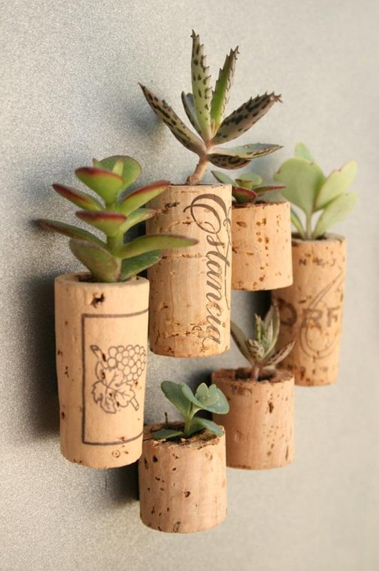 Cách làm vườn cây mini tại nhà cực dễ