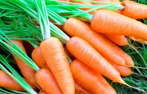 Cách làm mứt cà rốt ngày tết đơn giản nhất